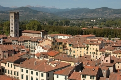 Lucca (3)
